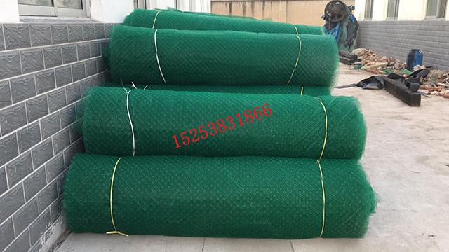三维植被网垫