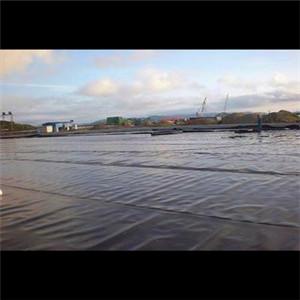 0.3mm厚度的防渗是鱼池防渗中常用的防渗膜标准