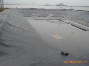在施工的过程中要制定藕池专用膜保护措施