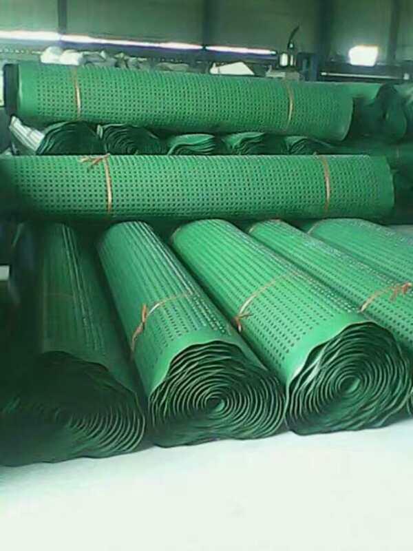 绿化专用排水板