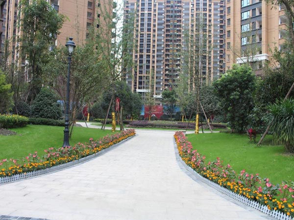 泰安小区绿化