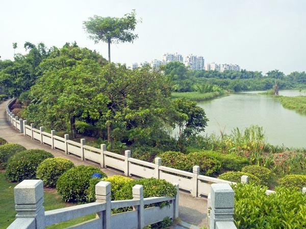 山东园林绿化