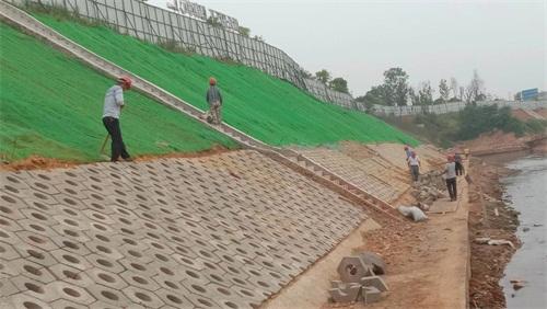 三维植被网结合喷混植生复绿在边坡工程的应用