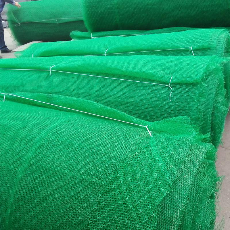 三维植被网提升边坡的稳定性和冲刷能力